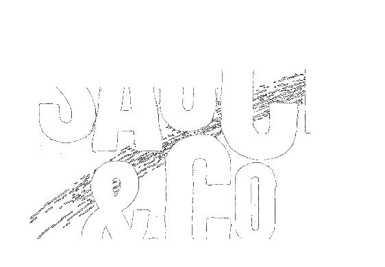 Sauce_Co